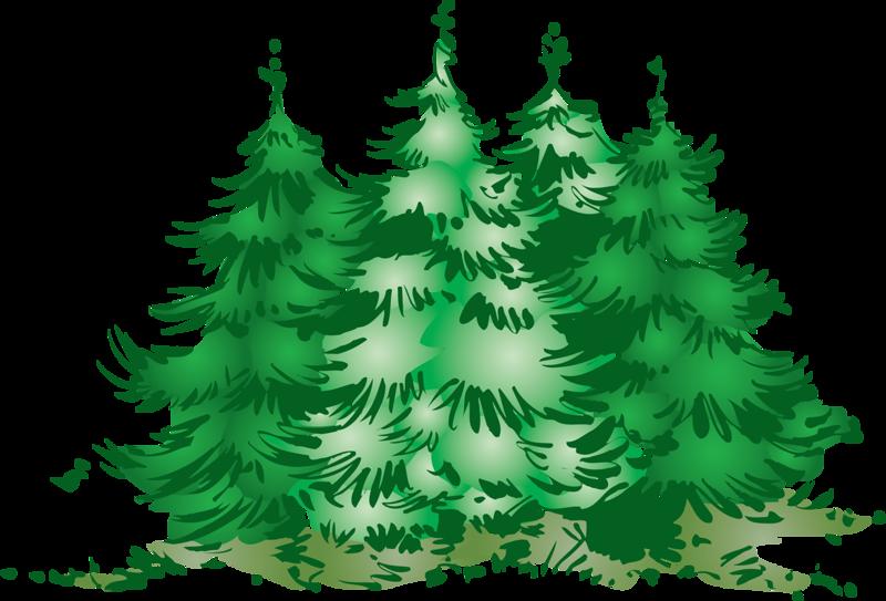 Рисунок с ёлками в лесу