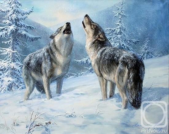 Волки фото пара